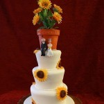 Wedding Cakes Wednesbury